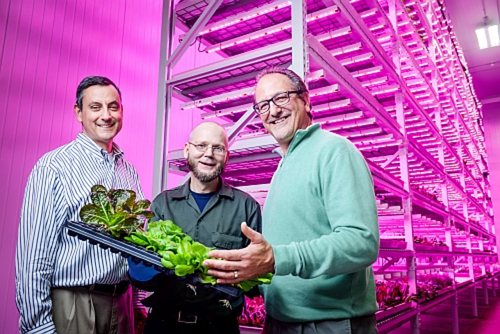 Philips and Green Sense Farms harness LEDs for horticulture