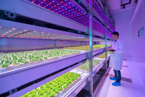 LED horticultural lighting: Philips GrowWise Center and Purdue studies space