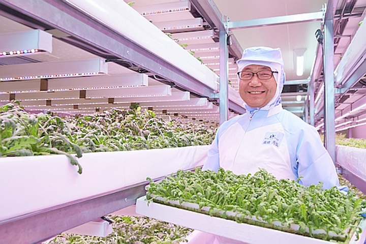 Philips Lighting details two new LED-lit vertical farms in Japan