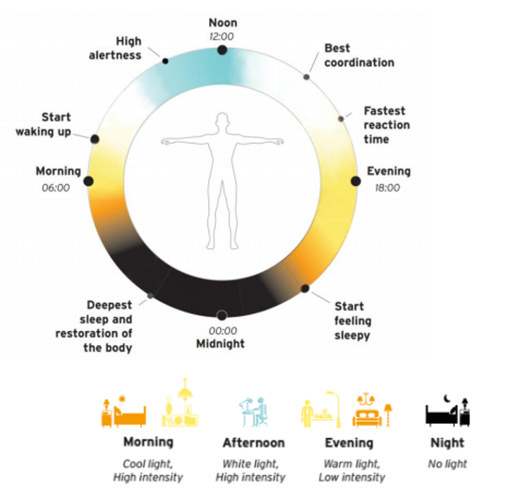 LightingEurope and IALD issue position paper on human-centric lighting