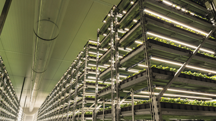 Understand energy efficiency of LED horticultural lighting systems