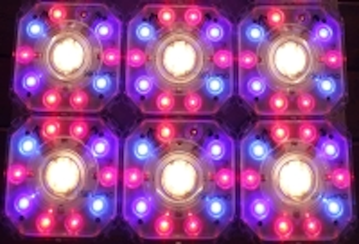 LRC horticultural lighting research questions the performance of LED luminaires in greenhouses
