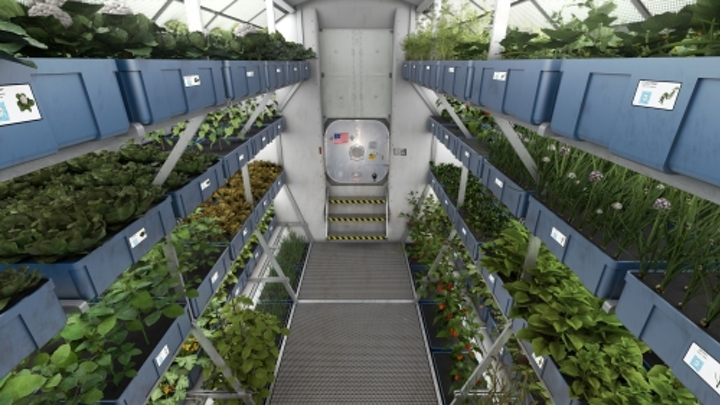 NASA utilizes Osram LED horticultural lighting to tune recipes for plants in space