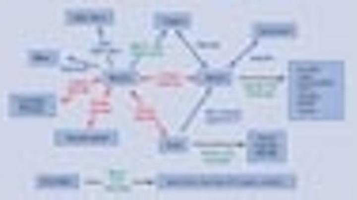 Content Dam Leds En Articles 2006 04 Toyoda Gosei And Lumileds Sign Patent Agreement Leftcolumn Article Thumbnailimage File