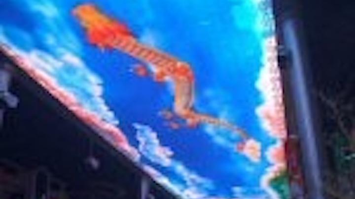 Content Dam Leds En Articles 2007 01 Led Skyscreen Creates Unique Ceiling For The Place Leftcolumn Article Thumbnailimage File
