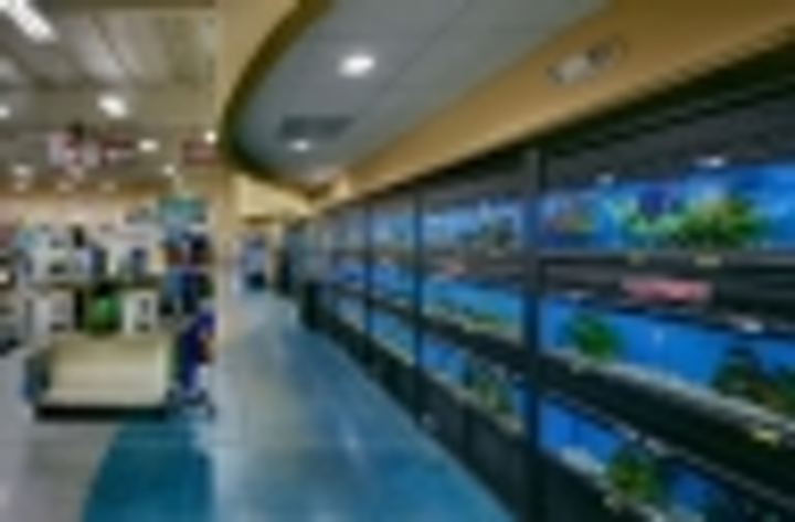 Content Dam Leds En Articles Iif 2013 01 Led And Fluorescent Lighting By Acuity Brands Installed At Virginia Pet Retailer Leftcolumn Article Thumbnailimage File