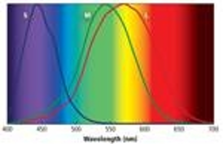 Content Dam Leds En Articles Print Volume 9 Issue 7 Features Understand Color Science To Maximize Success With Leds Part 2 Magazine Leftcolumn Article Thumbnailimage File
