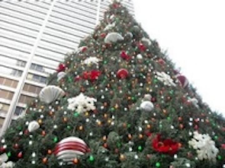 Content Dam Leds En Ugc 2008 12 Polybrite S Borealis Led Light Bulbs Will Illuminate Chicago S Daley Plaza Christmas Tree Leftcolumn Article Thumbnailimage File