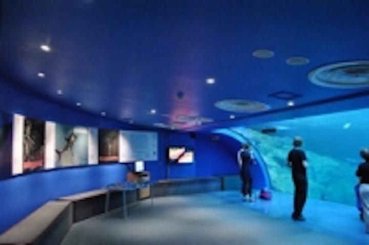 Content Dam Leds En Ugc 2011 06 Megaman Leds Illuminate The Uk S Largest Aquarium Leftcolumn Article Thumbnailimage File