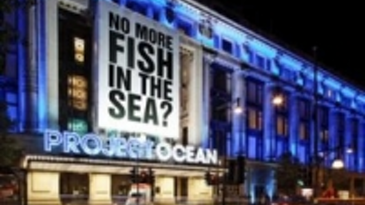 Content Dam Leds En Ugc 2011 08 Philips Helps Bring Selfridges Project Ocean Campaign To Life With Light Leftcolumn Article Thumbnailimage File