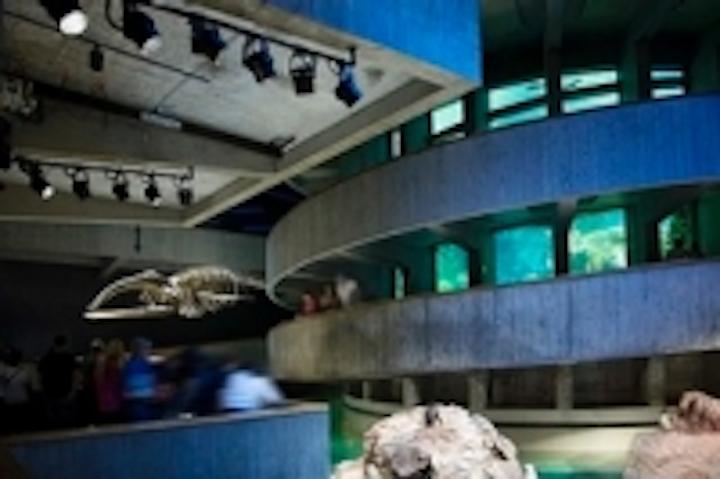 Content Dam Leds En Ugc 2013 10 New England Aquarium Recaptures Spotlight With Lumenpulse Led Lighting Fixtures Leftcolumn Article Thumbnailimage File
