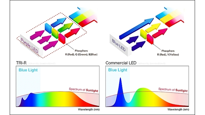 Seoul Semiconductors' SunLike LED technology, which is said to mimic the spectral power distribution of the sun, proved to positively impact sleep and alertness in a Swiss university lab setting. (Image credit: Illustration courtesy of Seoul Semiconductor.)
