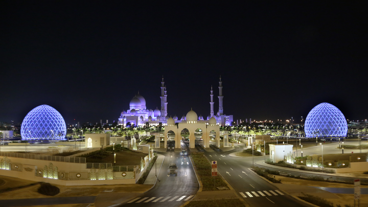 Shk Zayed Grand Mosque Domes 12